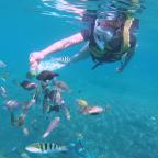 Snorkel trip (lost in translation)