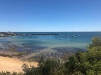 Mornington Snorkel